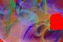 vojko-p-glj-59_100x70cmyk_resize-1024x717